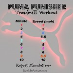 Puma Punisher Workout