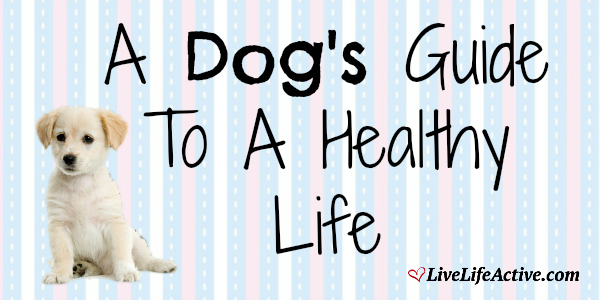 A Dog's Guide To A Healthy Life - So cute!