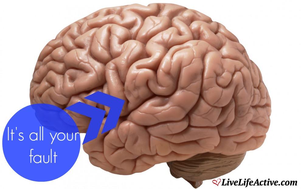 It's My Brains Fault