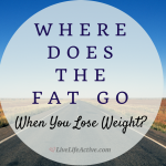 Where Does Fat Go When You Lose Weight? – Do you know the answer?