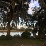 My Birthday and A Charleston Wedding At A Plantation