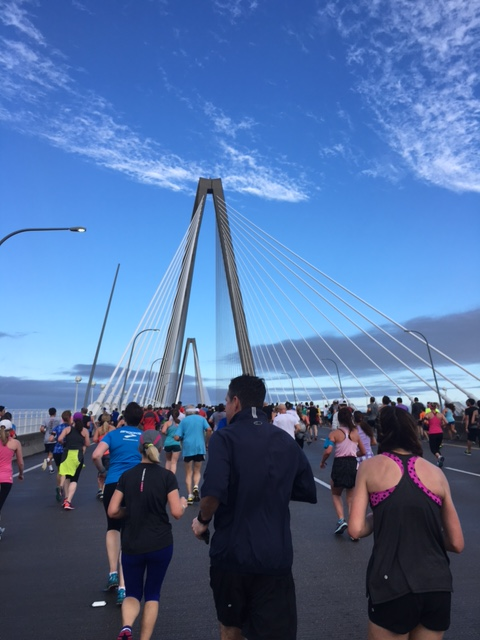 Cooper River Bridge Run 2016 picture