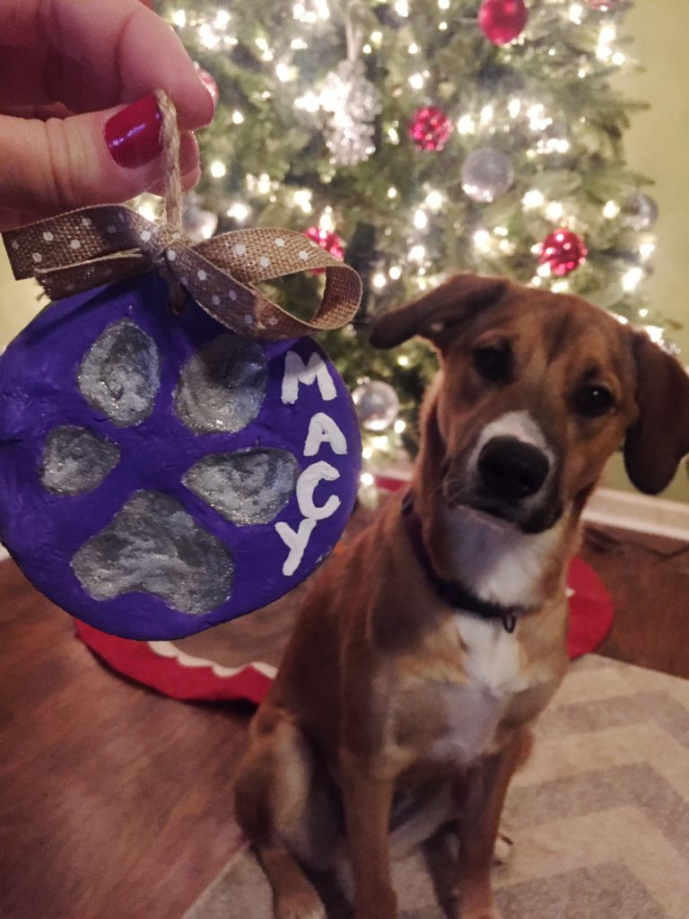 salt dough ornament dog paw print